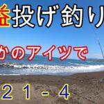 【石狩・浜益】投げ釣りでカレイ、ホッケ狙いがまさかのアイツで記録更新です!