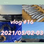 "[vlog #16] 大学生の""非""日常   海釣りと磯遊びをした2日間"