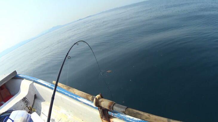 「釣りよかたい!」2021/5/31 津屋崎沖で大物🐟がヒット⁉