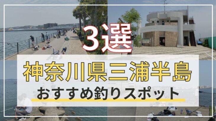 神奈川県三浦半島オススメ海釣りスポット3選!釣り初心者は必ず見るべき!5月上旬の釣り場、雰囲気公開!#神奈川県海釣り #三浦半島釣り