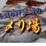 【海釣り情報  船釣り情報】何とか真鯛が釣れたら!〆り場第63弾