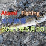 Atami  Fishing 水中映像 海釣り施設