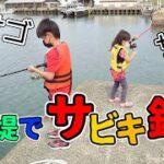 海釣り★防波堤でサビキ釣りをしました★アジ☆サバ☆カサゴ