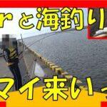 大津漁港でコマイを釣ろう!海釣り今シーズン一発目