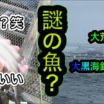 【暴風波浪】大荒れの日に釣りしたら謎の生き物?が釣れました【大黒海釣り公園】