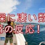 「船で海釣り行くよ!」 友ヶ島 アジサビキと落とし込み釣り篇-01