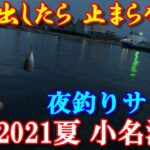 2021年 小名浜港(夏・海釣り)アジ釣り!釣れ出したら 止まらない。今、アジ・サバが釣れてます。【アジング・ウキサビキ】「アジングM-caro仕掛け・遠投サビキ仕掛け・水深チェック」