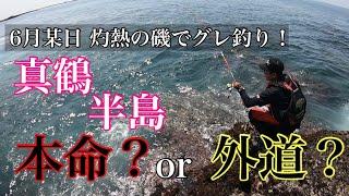 灼熱の磯でグレ釣り!連発する魚は本命か⁉︎外道か⁉︎【真鶴半島】【グレ釣り】 磯釣り #29