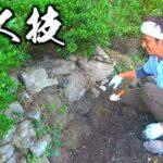 【山復興】イノシシが破壊した石垣を手作業で復旧する!!