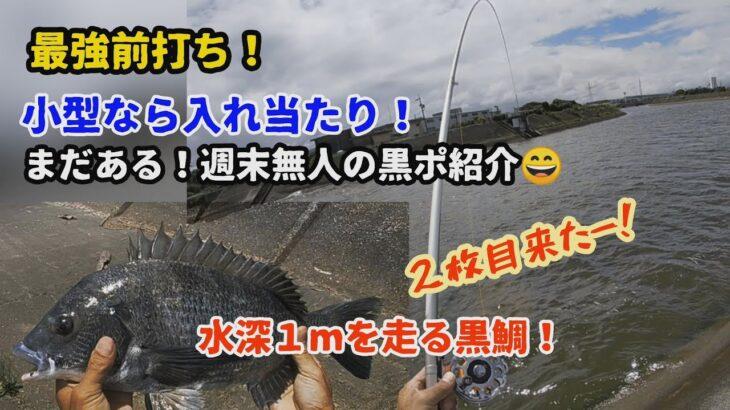 黒鯛釣り!穴場の開拓編・小型入れ食い!鈴鹿市磯山のクロダイ群