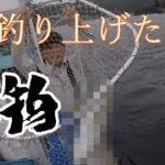 【五島列島】 初めての船つり! 釣ることができるのか! 後編【釣り】