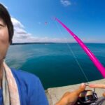青い海釣り遠征。スーパーライトショアジギング、浮き投げサビキ釣りで釣って食べる。