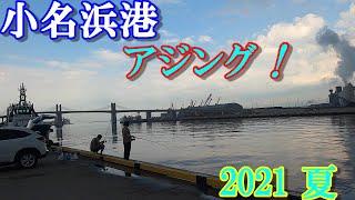 2021年夏 いわき市 小名浜港 「海のルアー釣りでアジを狙う!」【アジング・ウキサビキ」今、アジ・サバが釣れています。