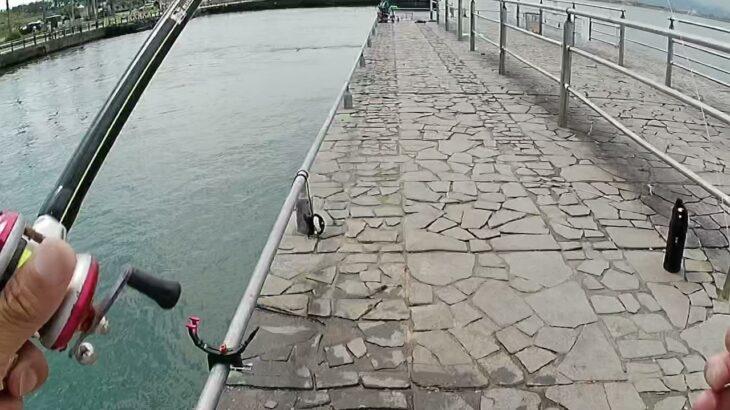 浜名湖 海釣り公園 T字堤 釣り