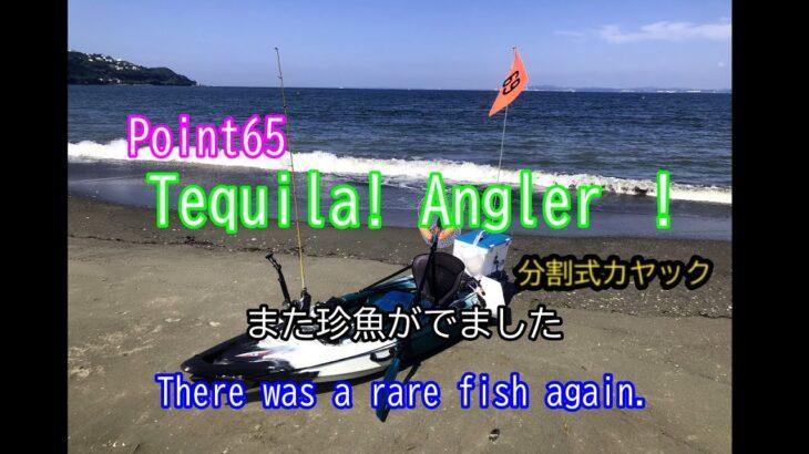 またまたカヤックフィッシング!【海釣り】【内房】【ルアー】