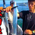 浅い海でルアーでテンヤでタチウオが釣れまくる!!