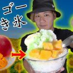 激甘のマンゴーを使ったかき氷を作ってみた!