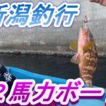 【2馬力新潟釣行】FRPホープボート/ホンダ船外機