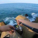海釣りはあれもこれも楽しい。遂にカニに嫌われる