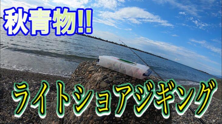 [秋の海釣り] 釣果ゼロアングラーが今日も行く!ライトショアジギング