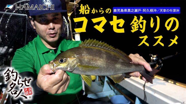【船からのコマセ釣りのススメ】 船からイサキ・マダイをコマセ釣りで狙います