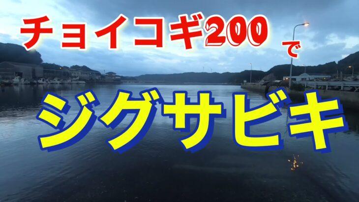 【女性アングラー】【チョイコギ200】【足漕ぎカヤック】【海釣り】【根魚を釣りたい】【ジグサビキ】【グロージグ】【初めてのサバ】
