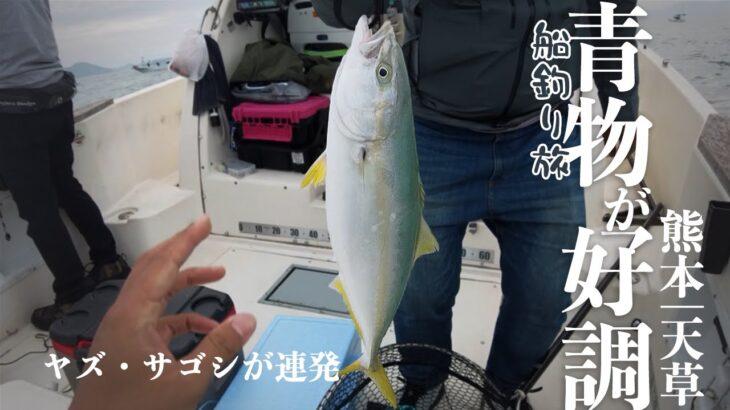 ヤズにサゴシ ジギングで青物が絶好調|ポーナム26Sで行く船釣り旅|羽干島編 熊本・天草サゴシ