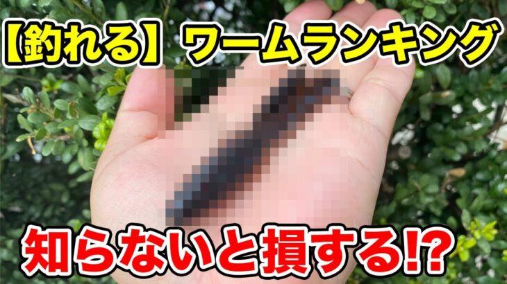【バス釣り】釣れるワームランキング!!信頼と実績のTOP5!!