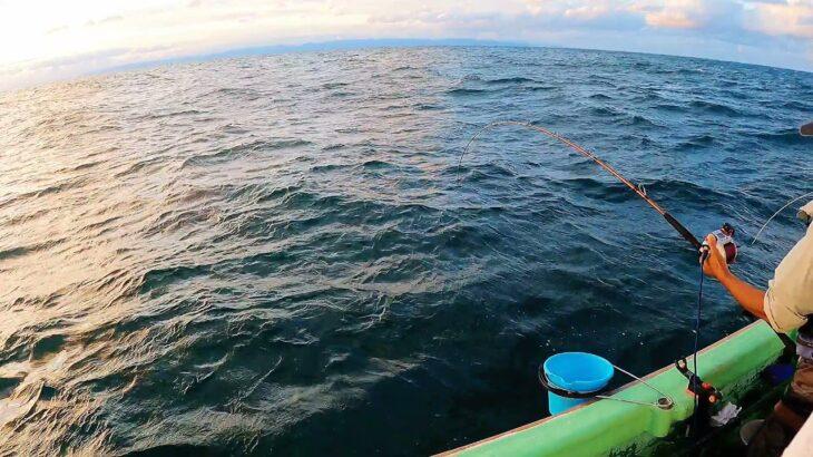 10・コマセ真鯛(マダイ50cm、1.6kg)【海釣り】【船釣り】