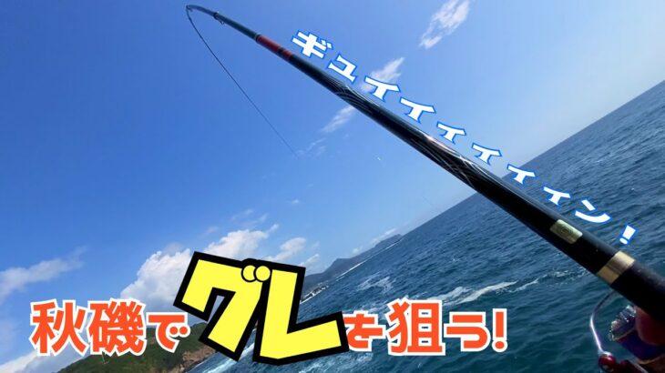 【グレ釣り】和歌山南紀の一級地磯で秋磯のグレを満喫して来たよ【磯釣り】