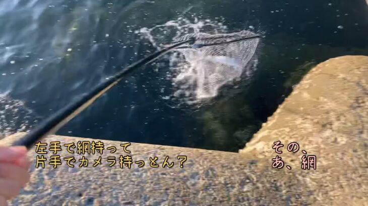 【海釣り】左手で網持って片手でカメラ持っとん?