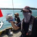 【離島生活】離島の防波堤からシーフードミックスで釣りすると…