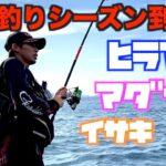 カゴ釣り&フカセ釣りで平政と真鯛狙い!【秋の磯釣り】