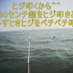 船釣り、水中、データ、キス